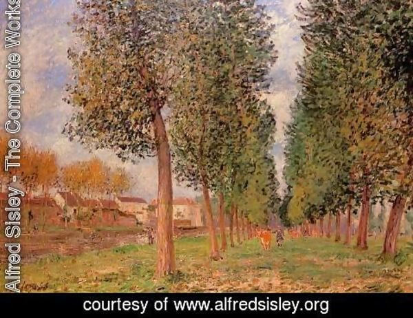 Alfred Sisley - The Poplar Avenue at Moret, Cloudy Day, Morning, 1888