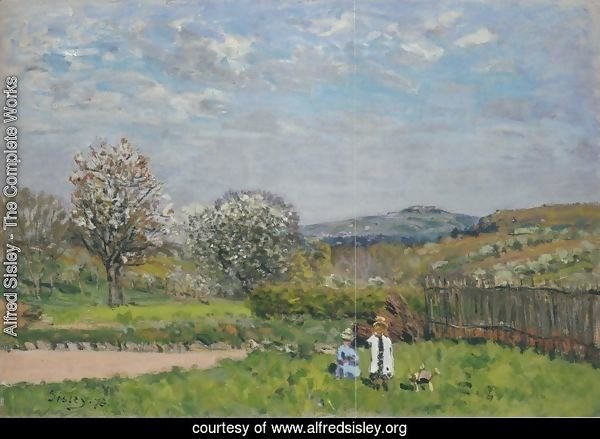 Children playing in the Meadow