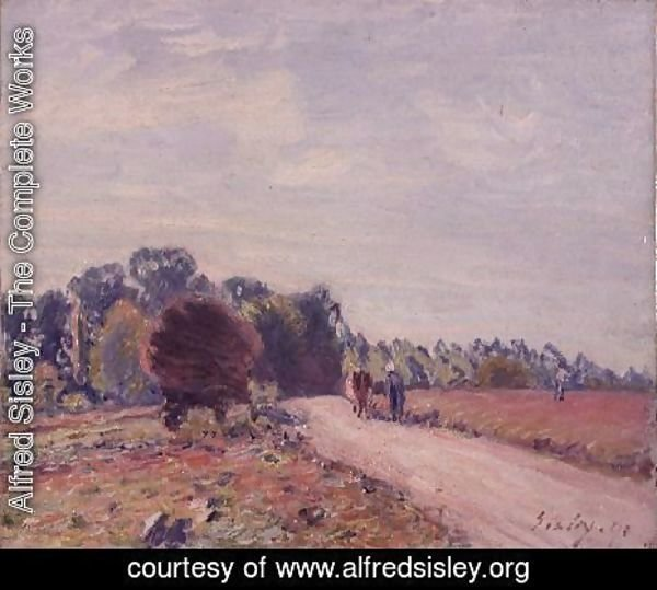 Alfred Sisley - The Road through the Meadows, Morning, 1891