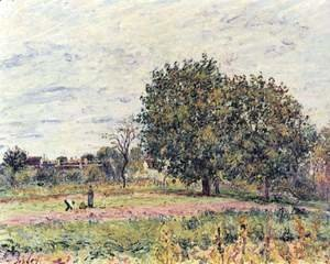 Alfred Sisley - Walnut Trees, Sunset - Early Days of October