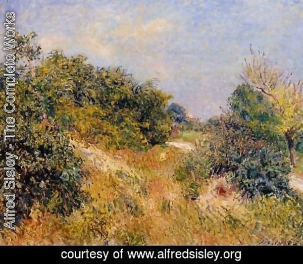 Alfred Sisley - Edge of Fountainbleau Forest - June Morning