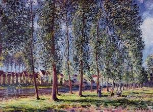 Alfred Sisley - Lane of Poplars at Moret