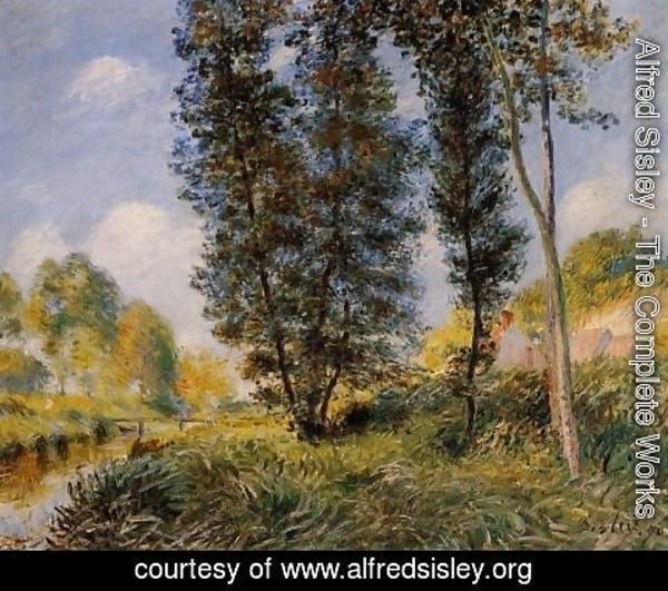 Alfred Sisley - Banks of the Orvanne
