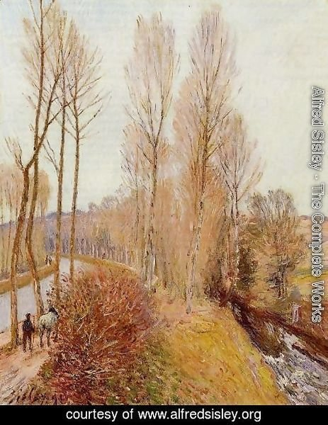 Alfred Sisley - Path along the Loing Canal