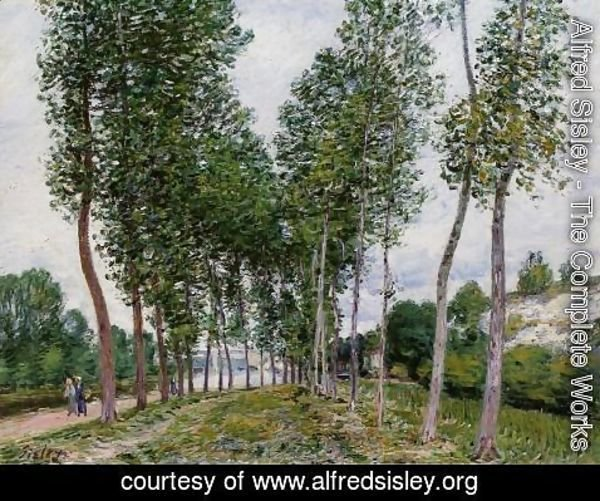 Alfred Sisley - Lane of Poplars on the Banks of the Loing