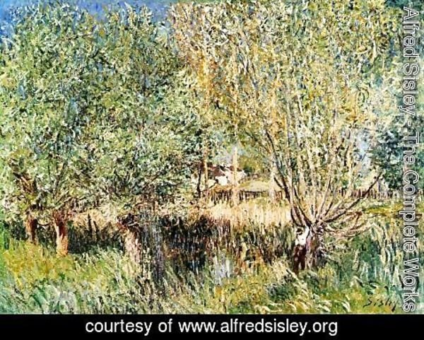 Alfred Sisley - Willows on the Banks of the Orvanne