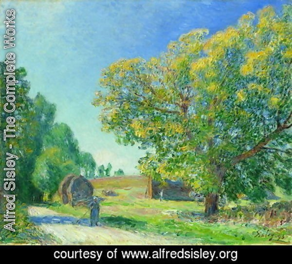 Alfred Sisley - A Forest Clearing
