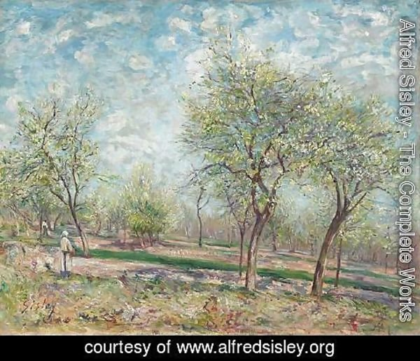 Alfred Sisley - Apple Trees in Bloom