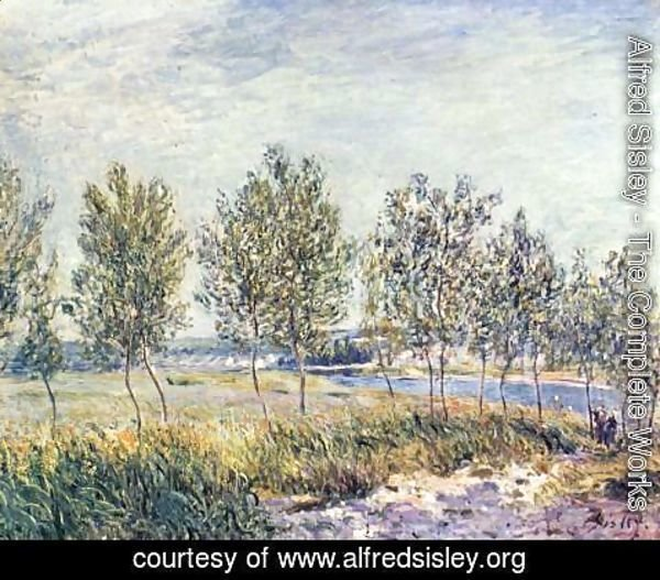 Alfred Sisley - Meadow in By