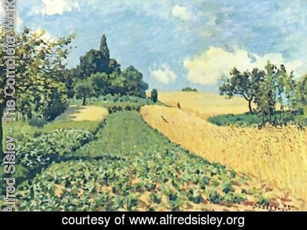 Alfred Sisley - Grain fields on the hills of Argenteuil