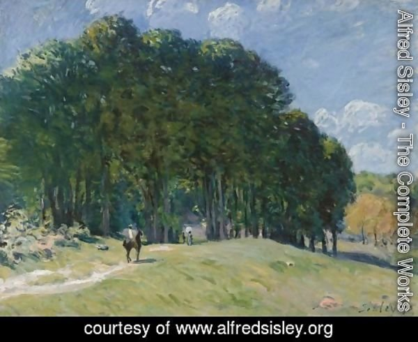 Alfred Sisley - Rider at the Edge of the Forest