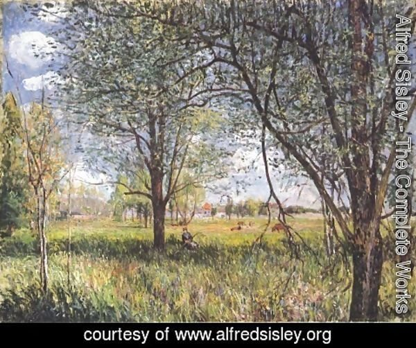 Alfred Sisley - Willows in a field afternoon